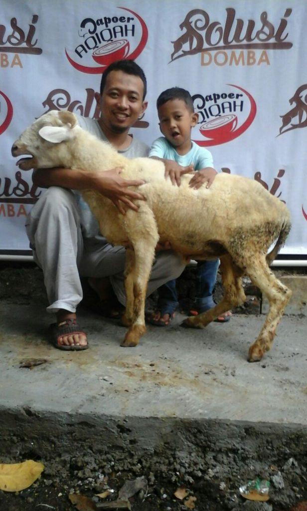 Domba Paket Box Aqiqah Cimahi